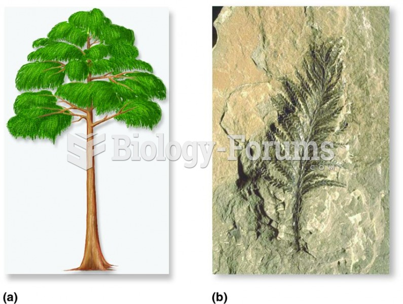 Wood first appeared in plants called progymnosperms.