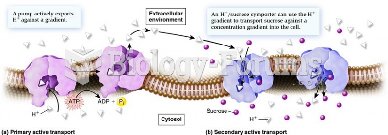Types of active transport.