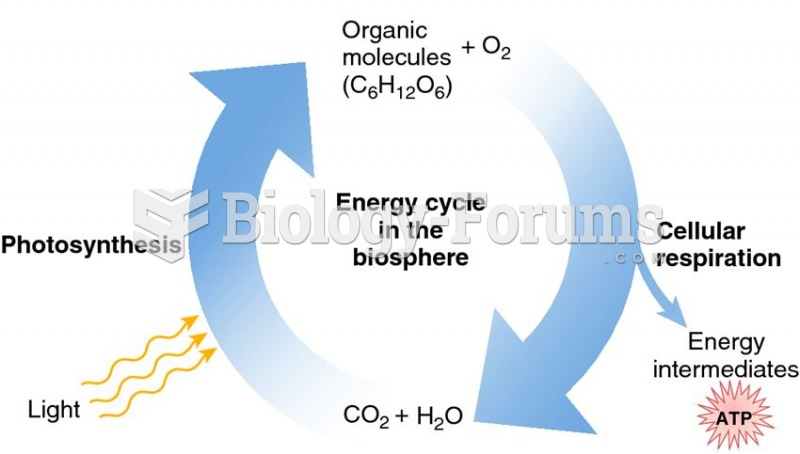 Energy cycle of the biosphere