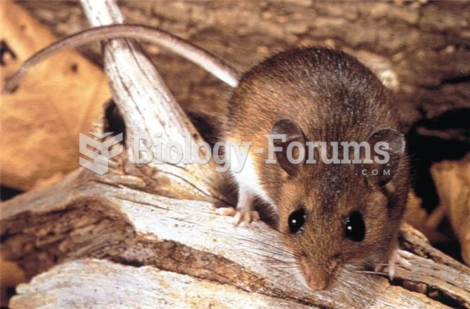 The deer mouse and the African elephant represent extremes among mammals of r versus K selection.