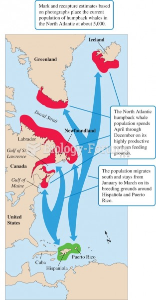 Photoidentification and the North Atlantic humpback whale population.