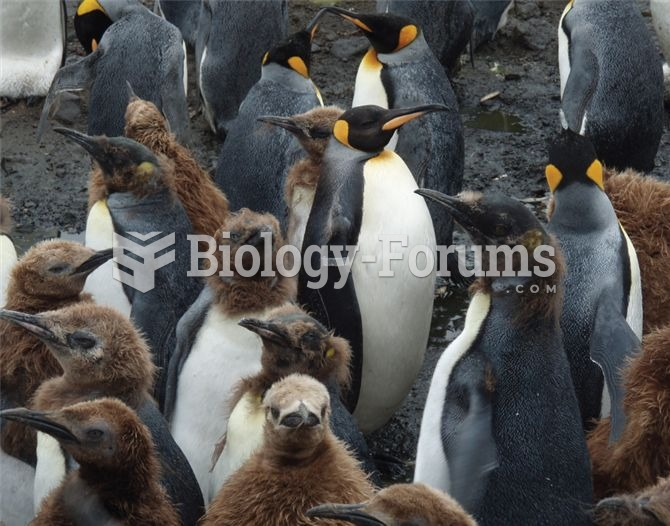 Flipper tags have been extensively used in the study of penguin population dynamics.