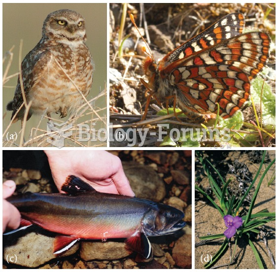 Species currently endangered in Canada include (a) the Burrowing Owl, Athene cunicularia; (b) Taylor