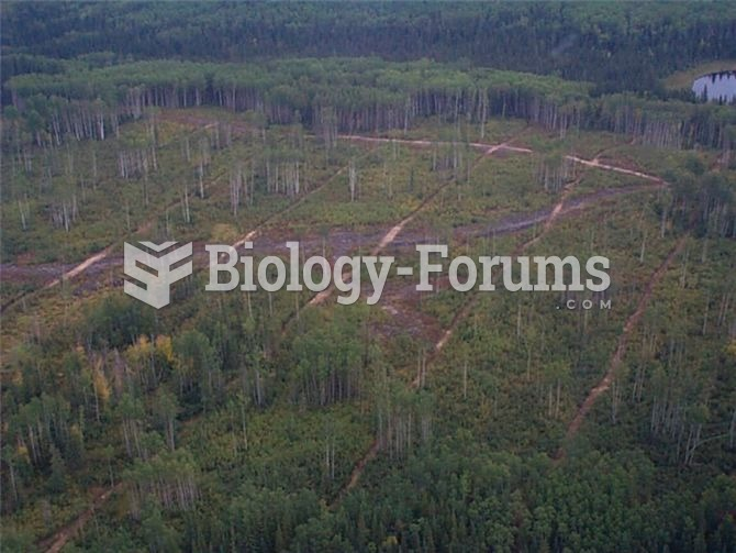 Large regions of the Boreal forest in Alberta have been divided into a grid due to industrial develo