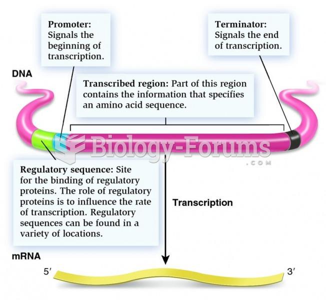 A structural gene as a transcriptional unit