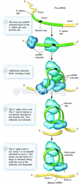Modifications to eukaryotic pre-mRNA are needed to create a functional (mature) mRNA molecule