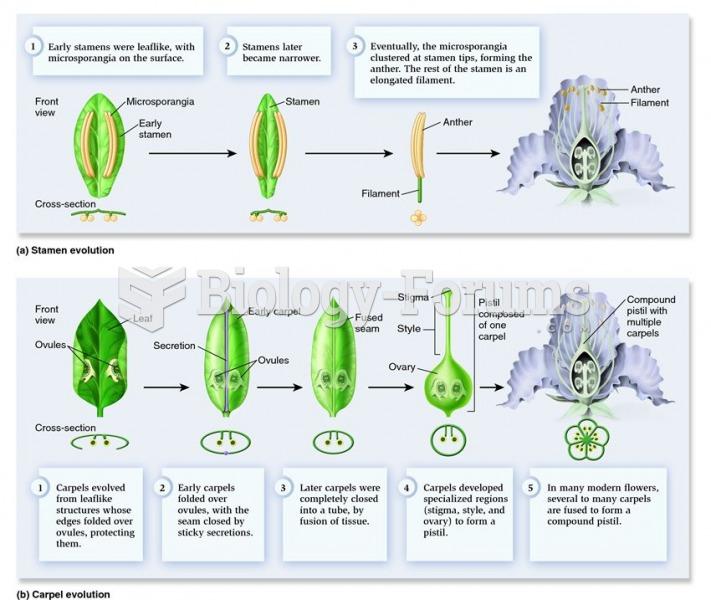Hypothetical evolution of stamens, carpels, and pistil