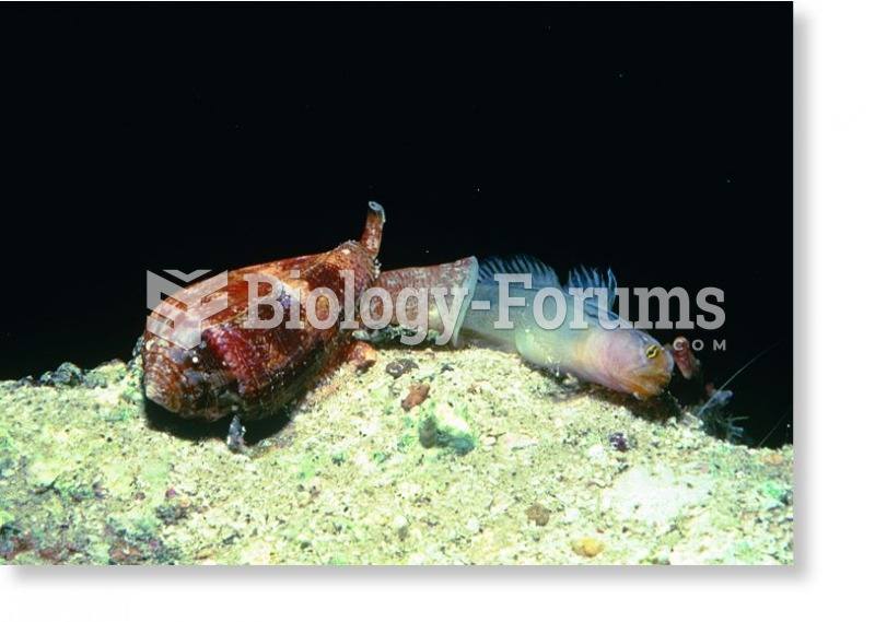 Some gastropods are predators.