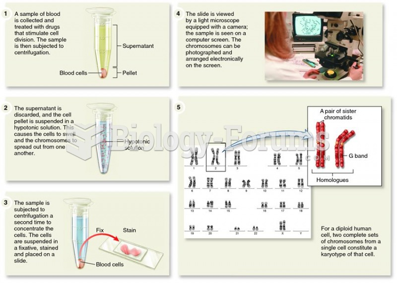 The procedure for making a karyotype.