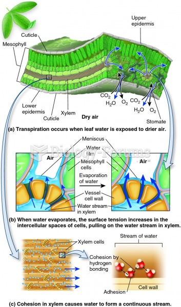 The roles of transpiration, cohesion, adhesion, and tension in long-distance water transport.