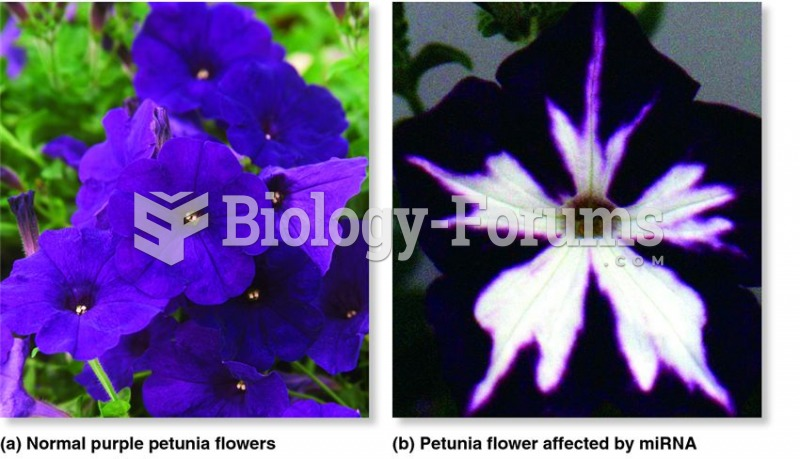 Gene silencing influences flower colour in petunia.