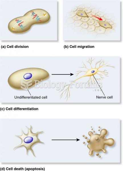Four types of cellular responses to positional information in animals.
