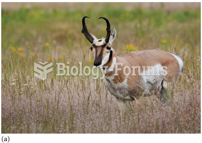 (a) Pronghorn, native grazers of the temperate grasslands of North America.
