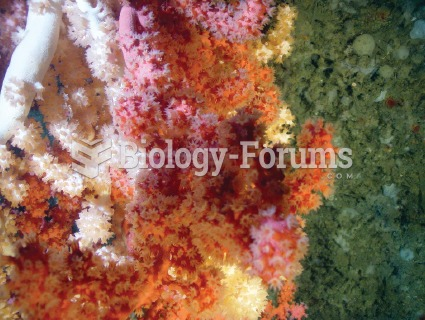 Examples of deep-sea corals found in the Sable Gully, 200 km off the coast of Nova Scotia.