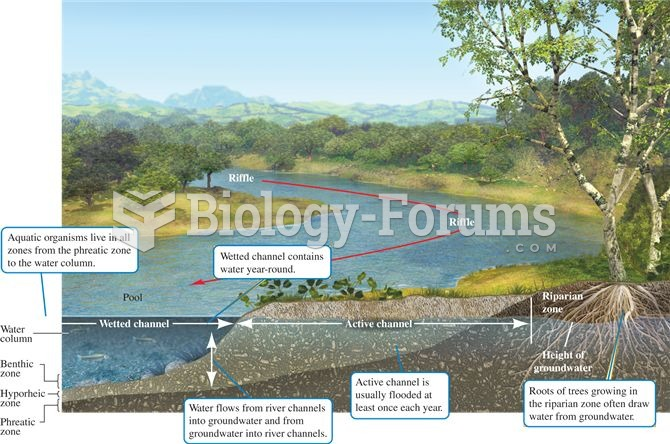 The three dimensions of stream structure.