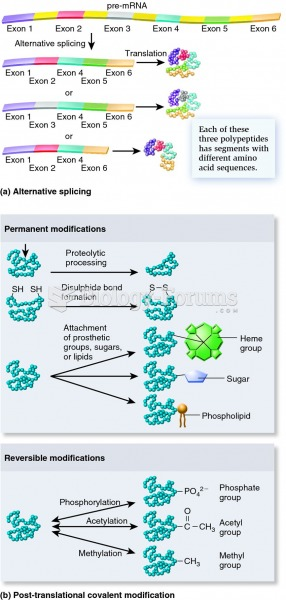 Cellular mechanisms that increase protein diversity