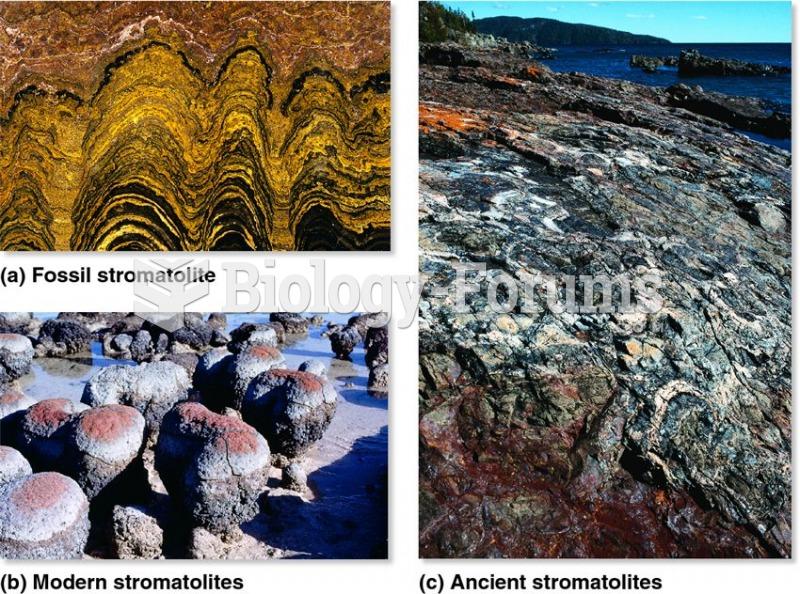 Fossil and modern stromatolites: evidence of autotrophic cyanobacteria.