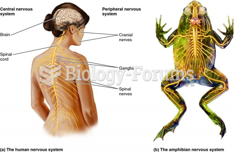 Organization of the vertebrate nervous system.