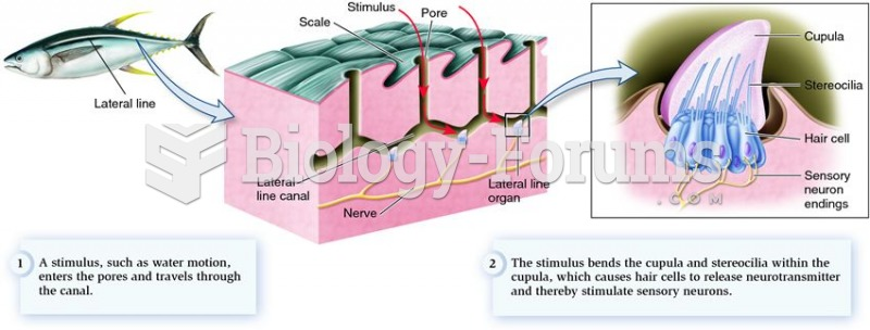 Mechanoreceptors in the lateral line system that detect changes in water movement.
