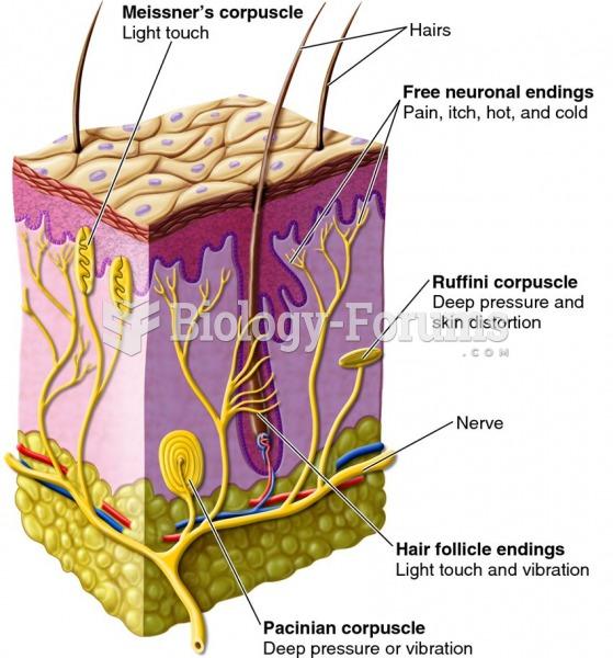Examples of sensory receptors in the skin of mammals.