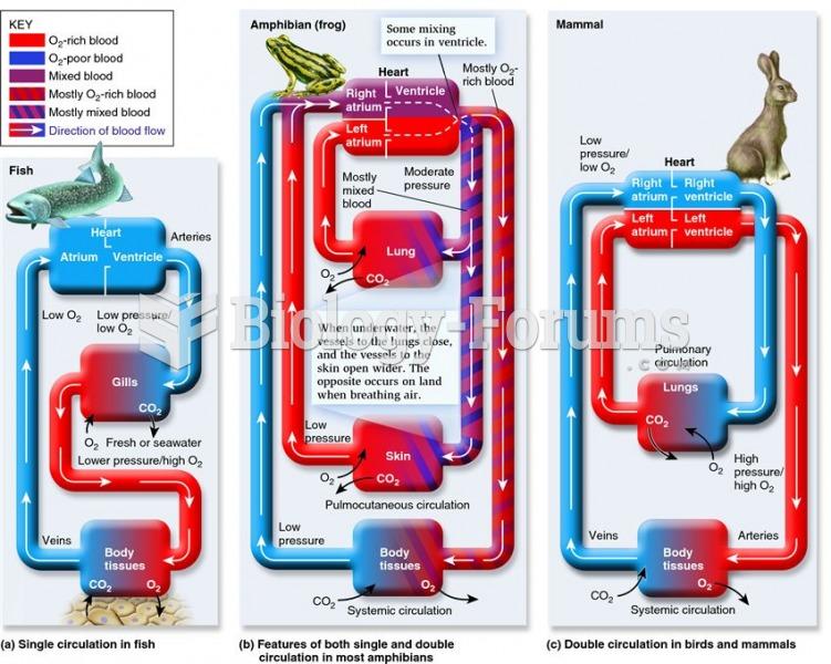 Representative vertebrate circulatory systems.