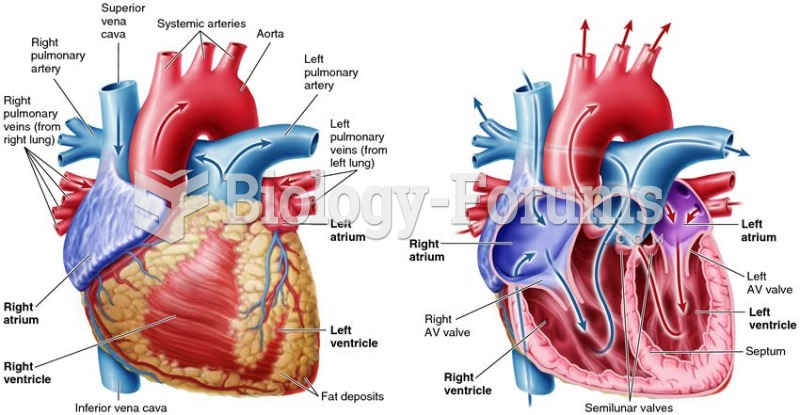 The mammalian heart and the route blood takes through it.