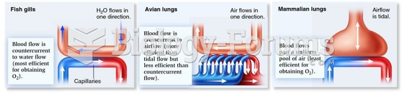 Relationships between direction of flow of blood and water or air in different vertebrates.
