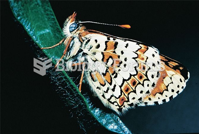 Long-term studies of the Glanville fritillary butterfly, Melitaea cinxia, have provided exceptional