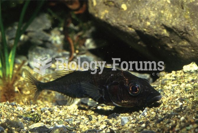 The threespine stickleback (Gasterosteus aculeatus) has been used as a model organism for the study