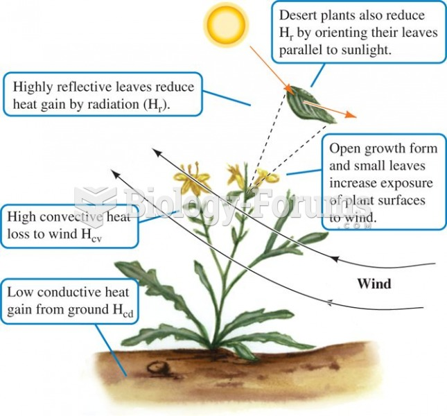 The form and orientation of desert plants reduces heat gain from the environment and facilitates coo