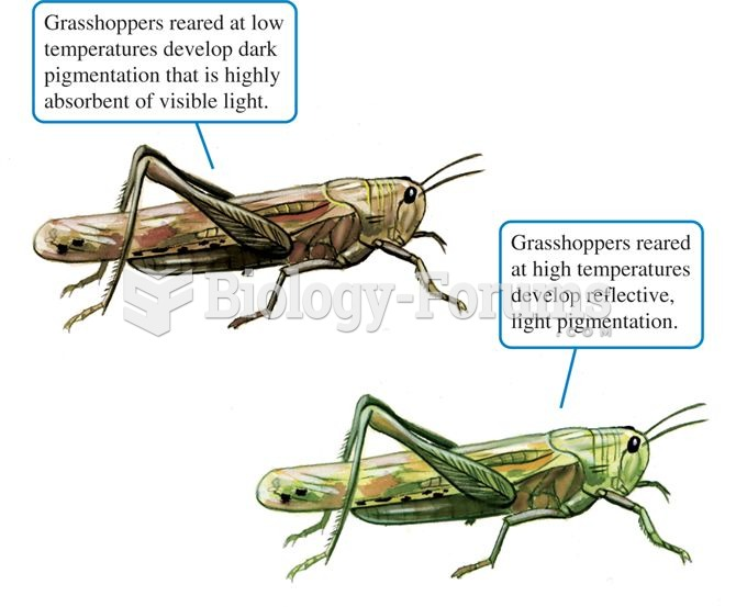 Rearing temperatures influence the pigmentation of the clear-winged grasshopper.