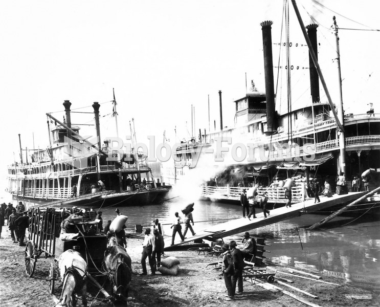 A sidewheeler on the Mississippi. In 1856 Samuel Clemens became an apprentice to a steamboat pilot a