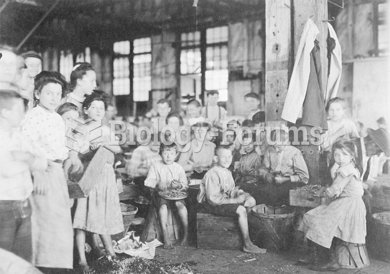 Children in Baltimore (1909) pull the stringy parts from beans in preparation for canning. Photograp