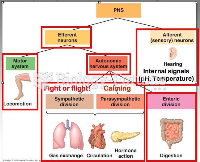 Peripheral nervous system PNS Diagram
