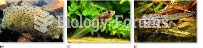 Amphibian development in the wood frog (Rana sylvatica)