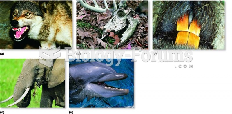 Mammalian teeth