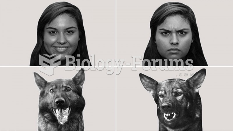 Human Emotions and Dogs