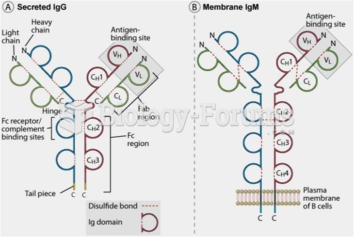 Structure of an antibody molecule