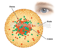 Distribution of Rods and Cones on the Retina