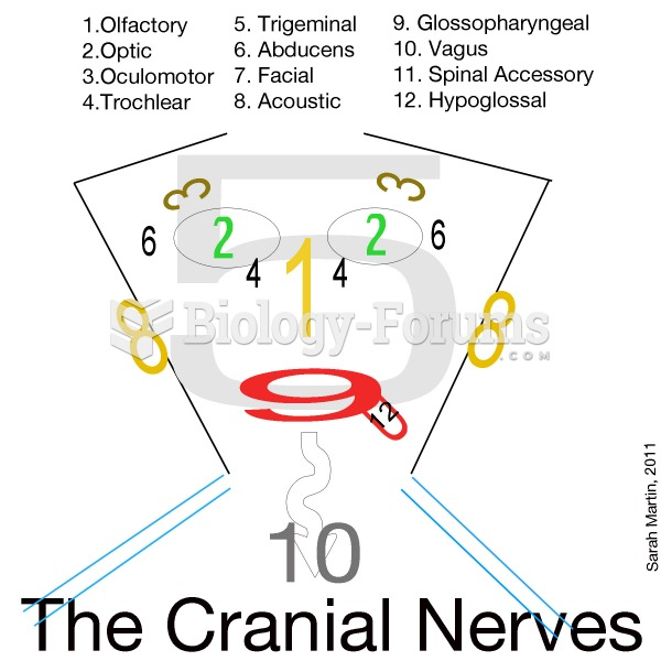 Cranial Nerves Memory Tool