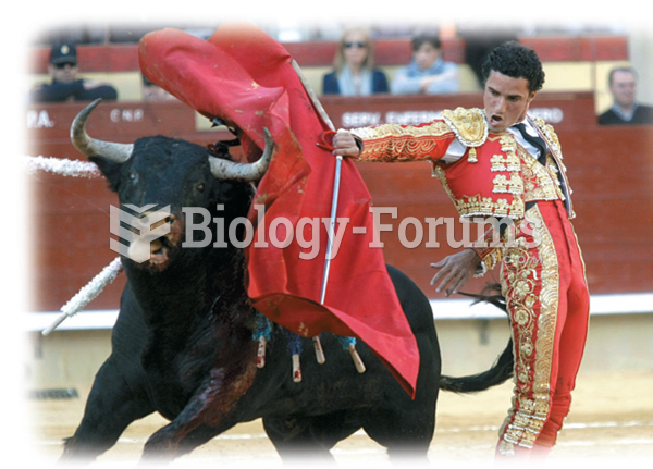 Many Americans perceive bullfighting as a cruel activity that should be illegal everywhere. To most ...