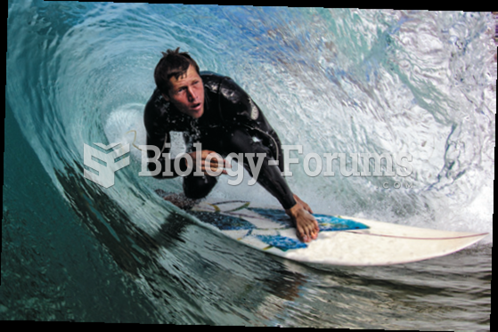 With their specialized language and activities, surfers are highly recognized as members of a ...