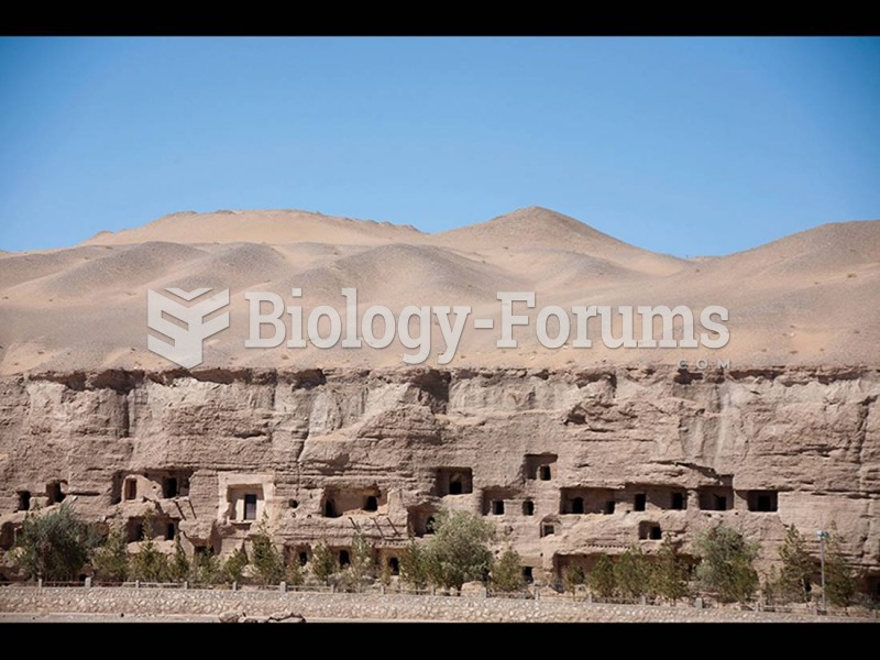 Mogao Caves (Caves of a Thousand Buddhas) Dunhuang, China.