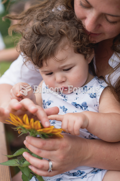 Looking at objects in nature is a great way to encourage joint attention and allows infants to learn ...