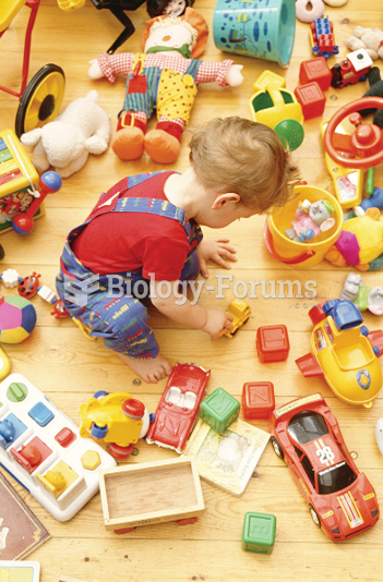 Children may sometimes sort their toys into different categories.