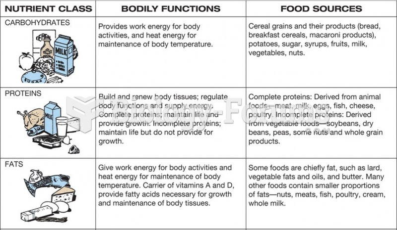 A healthy diet is made up of well-balanced nutrients.