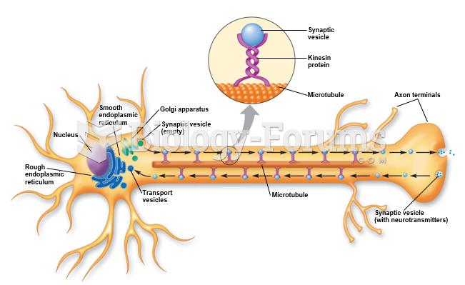 Fast axonal transport of vesicles.
