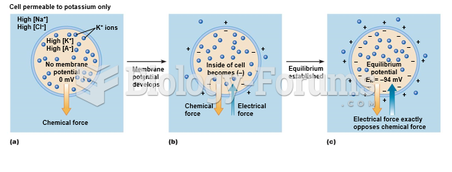 Membrane potential of a cell permeable to potassium only.