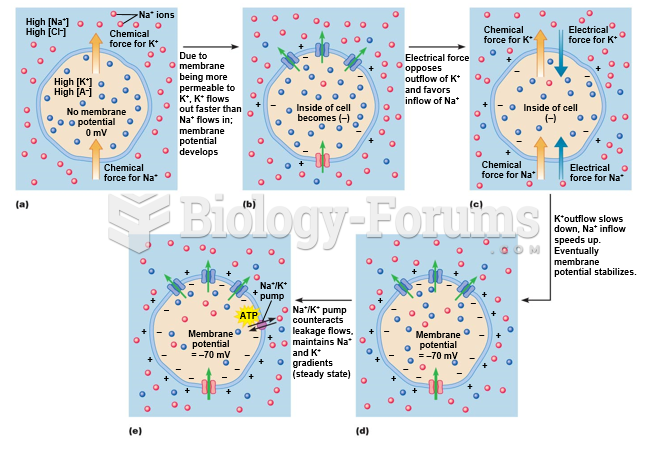 Establishing a steady-state resting membrane potential.