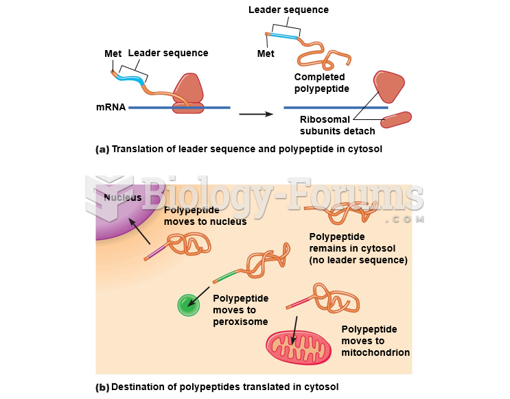 Targeting of proteins translated in the cytosol.